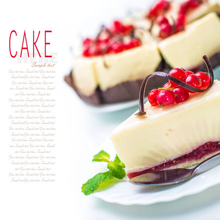 delicious piece of cheesecake decorated with chocolate, currant and mint photo