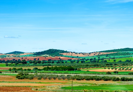 picturesque fields in southern Spain near the town of Toledo photo
