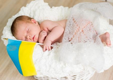lovely newborn baby sleeps in a wicker basket photo