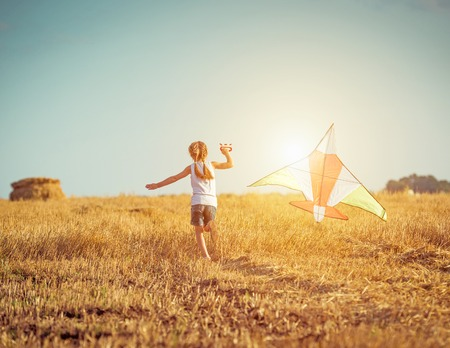 kite flying: happy little girl with a kite in a field