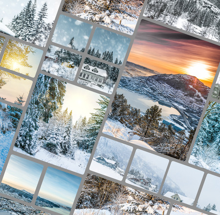 photo collage of winter forest in the mountains photo