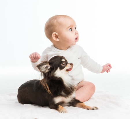 portrait of adorable five months smiling girl with her little dog isolated on white background Zdjęcie Seryjne