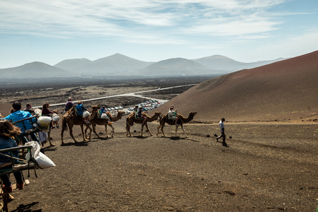 saddle camel: TIMANFAYA - MARCH 31: Tourists taking a camel ride on March 31, 2015 in Timanfaya National Park, Lanzarote island, Spain. The parkland is entirely made up of volcanic soil.