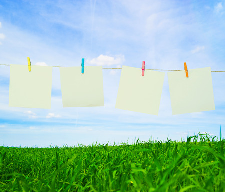paper pin: Clothes pin holding white sheets of paper outdoors