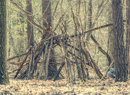 bivouac: hut of branches in the forest. Stock Photo