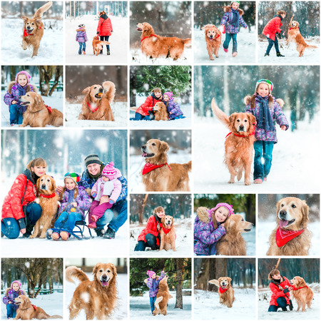 animal family: Photo collage of winter walks with children and a dog