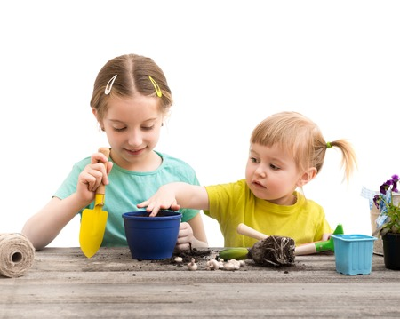 Two little sisters are engaged in gardening. Hyacinth plant flowers on a wooden table Imagens