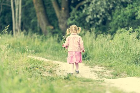 dress up: Cute little girl on the meadow in summer day