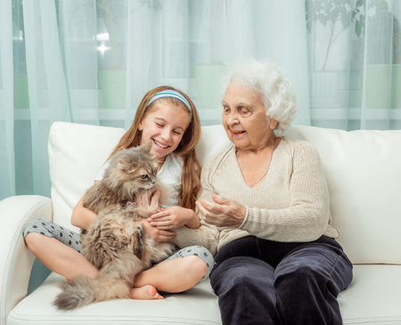 the great grandmother: little girl withg randmother playing with cat on sofa