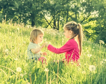 children at play: Two happy  little sisters on the field with dandelions