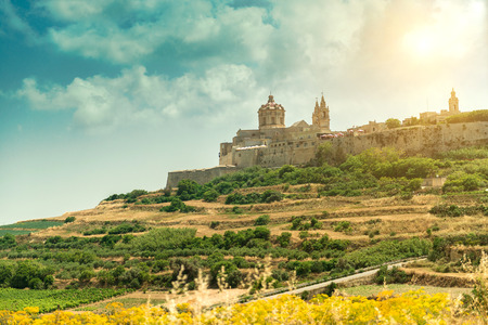 Mdina in the day. Malta