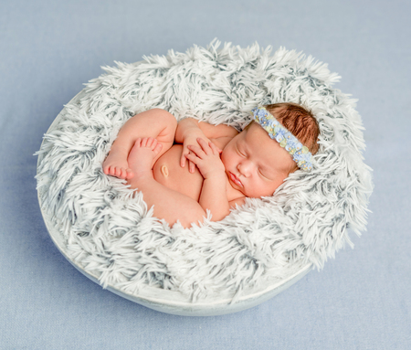nude little girls: funny newborn girl with headband with flowers in round basket on furry blanket covered with veil