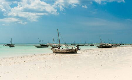 paddles: beautiful landscape with fishing boats on the shore, Zanzibar, Africa