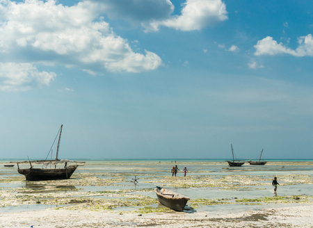 paddles: ZANZIBAR, TANZANIYA- JULY 10: beautiful landscape with fishing boats on the shore on July 10, 2016 in Zanzibar, Tanzania