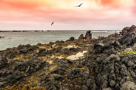 view on sea: beautiful sunset view of sea from Lanzarote coast