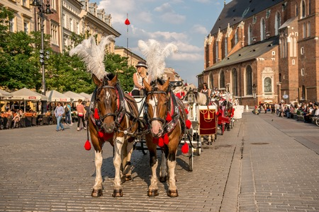 Carriage with horses, cobbled streets of Krakow Editorial
