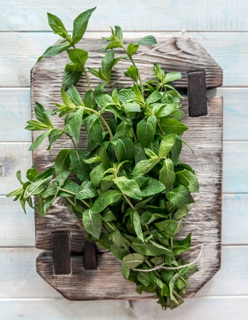 Heavy cutting board, fresh veiny mint leaves, topview