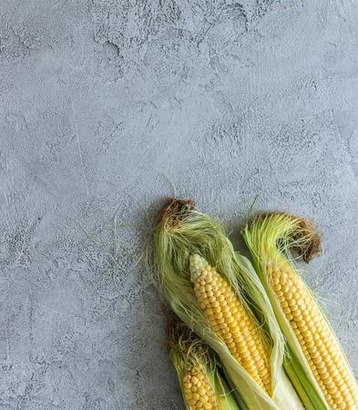 corn on cob, in coating, topview, copyspace