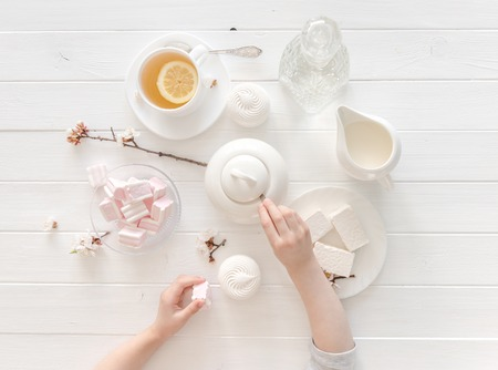 marshmellow: tiny hands holding sweets for tea ceremony, topview