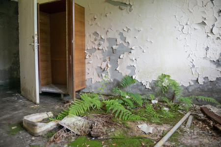 desolate room with wardrobe and overgrown floor in Pripyat