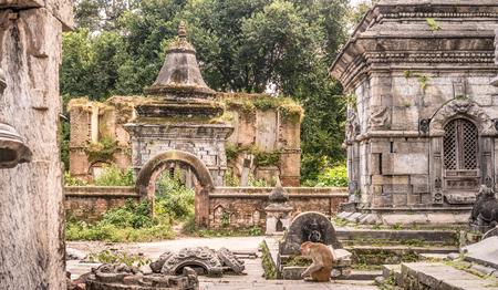 Wall with white small temples around Pashupatinath temple. Kathmandu, Nepal, Asia. Stock Photo - 88802015
