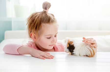 Smiling little girl hugging guinea pig