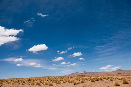 Sunshine desert field in Bolivia