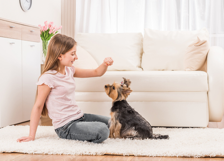 Cute puppy and happy young girl Stock Photo
