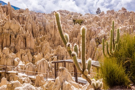 Panorama of Moon Valley with cactus, Bolivia Stock Photo