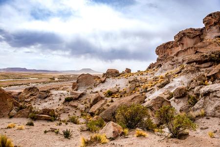 spacious Bolivian landscape 写真素材