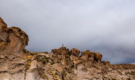 Spacious Bolivian landscape