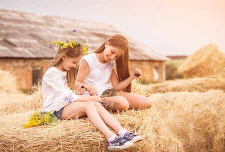 Cute sisters in the field with cherry and flowers 스톡 콘텐츠