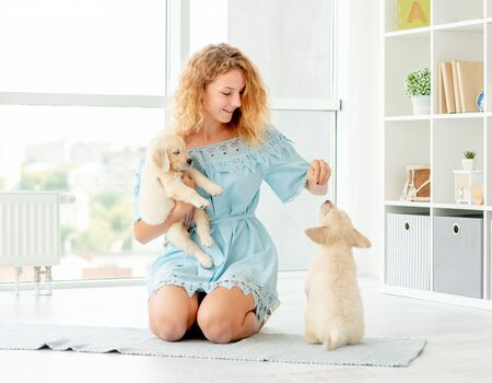 Girl with retriever puppies