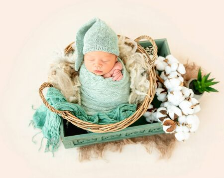 Newborn boy wrapped in a blanket Archivio Fotografico - 131016828