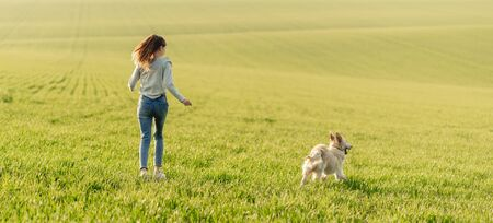 Girl with dog on sunny field