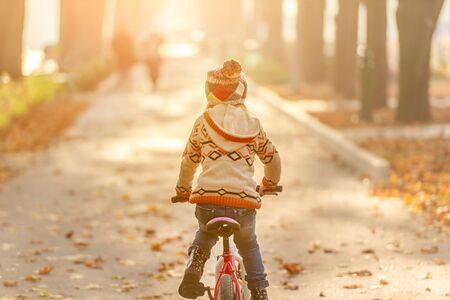 Back view of kid riding bicycle in autumn park 免版税图像