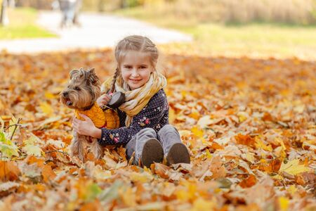 Cute girl with yorkshire terrier 免版税图像