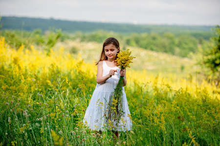 Cute little girl holding wildflower bouquet Foto de archivo - 152201328