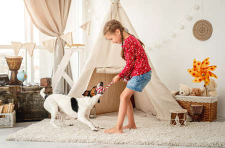 Little girl playing with fox terrier