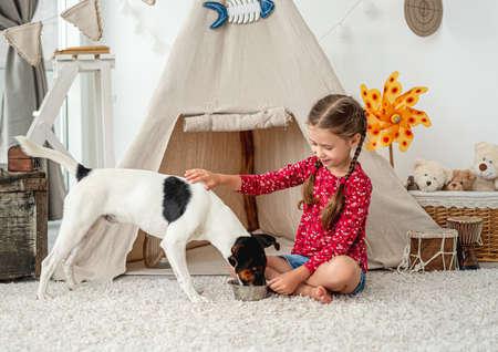 Little girl feeding fox terrier at home