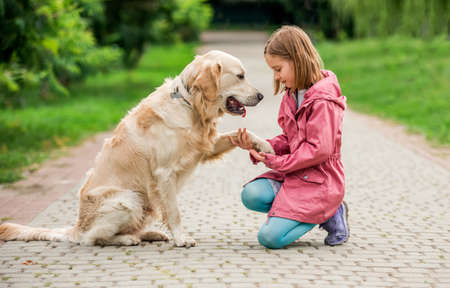 Little girl holding dogs paw in park 스톡 콘텐츠 - 153211492