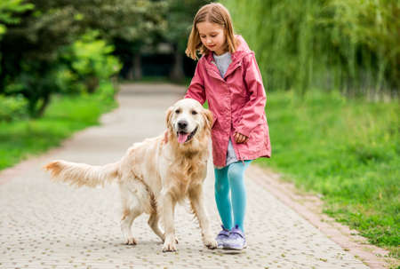 Little girl walking with golden retriever 스톡 콘텐츠