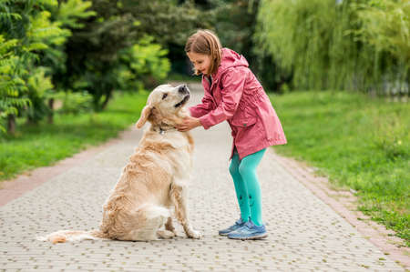 Little girl with golden retriever in park 스톡 콘텐츠 - 153211625