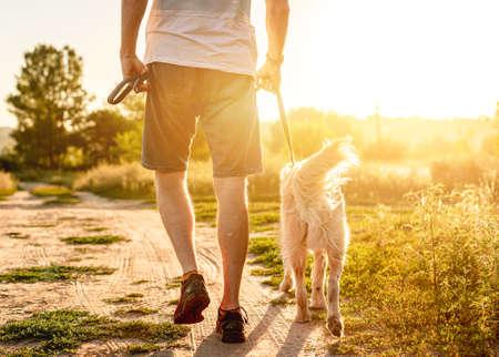 Man walking golden retriever in nature