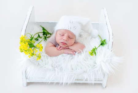 Newborn studio portrait 스톡 콘텐츠
