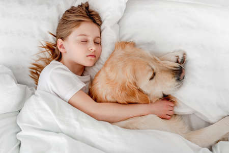 Girl with golden retriever dog in the bed