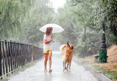 Girl with golden retriever dog in rainy day