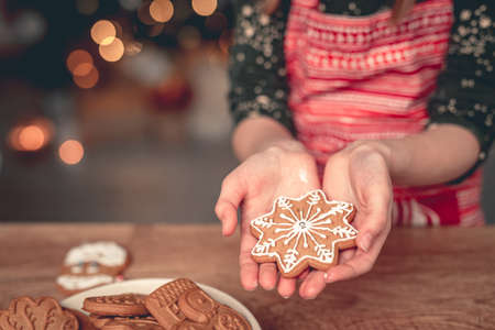 Decorated gingerbread snowflake on girl palm