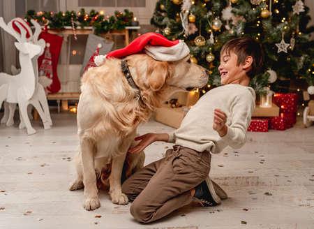 Little boy putting santa hat on dog