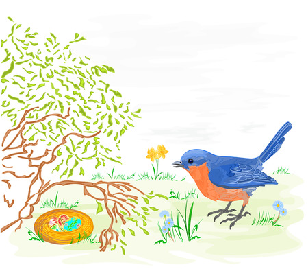 Easter bird with daffodils and easter eggs  vector illustration 일러스트